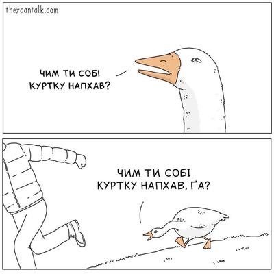 https://cs12.pikabu.ru/images/previews_comm/2021-03_2/1615229268143379163.jpg