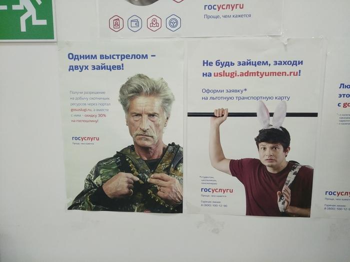 Опасная Тюмень МФЦ, Госуслуги, Заяц