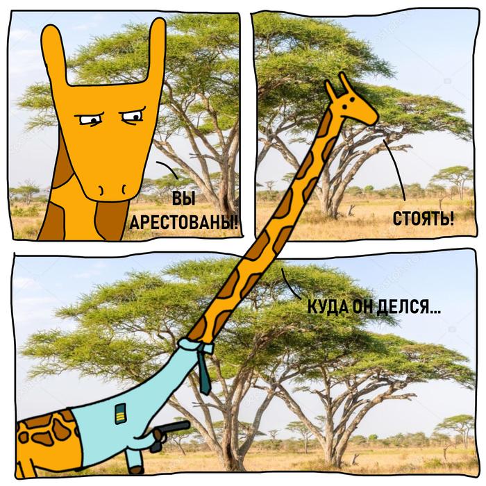 Жираф-коп