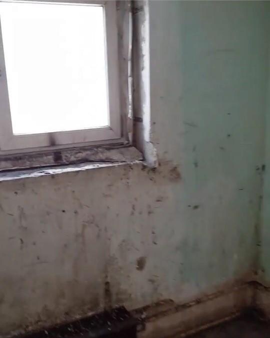 Управляющая компания не может найти управу на жильцов-вандалов. Новокузнецк, Быдло, Негатив, Длиннопост, Управляющая компания, Жильцы, Вандализм
