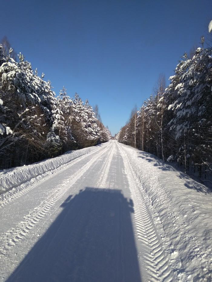 Дорога в лесу Дорога, Лес, Зима, Испытания, Военная техника