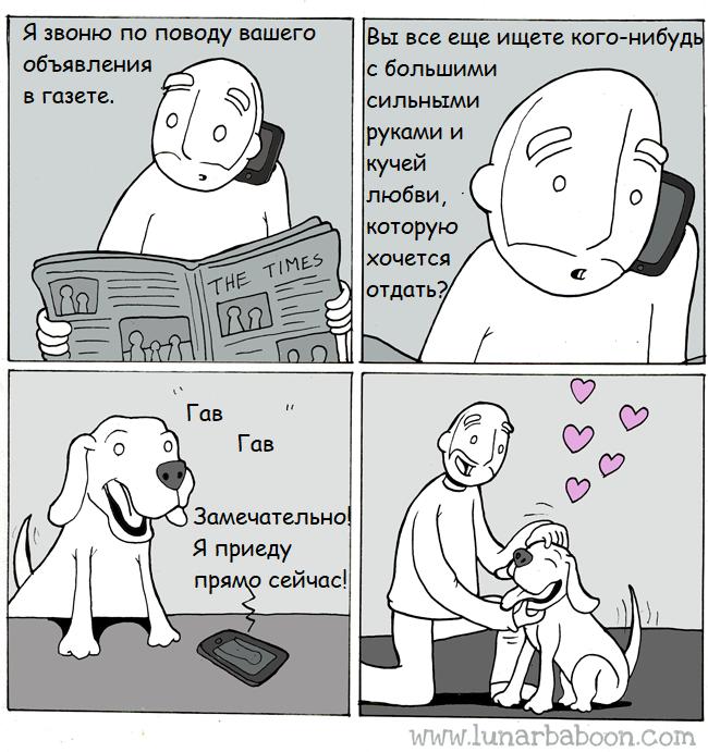 Разыскивается Lunarbaboon, Перевод, Комиксы