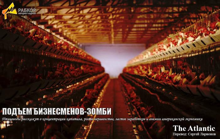 Рабкор: Работа монопсоний на примере куриного рынка в США (статья в The Atlantic) Экономика, Капитализм, Зарубежная пресса, The Atlantic, Сельское хозяйство, США, Длиннопост
