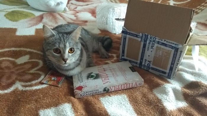 Мой библиотекарь-альтруист! Буккроссинг, Обмен подарками, Санкт-Петербург, Книги, Подарок, Альтруизм, Кот, Длиннопост, Отчет по обмену подарками