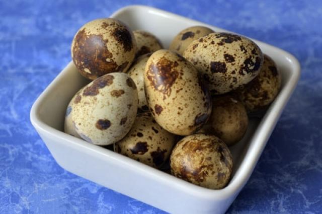 Какие яйца, кроме куриных, употребляют в пищу. Яйца, Продукты питания, Длиннопост, Еда