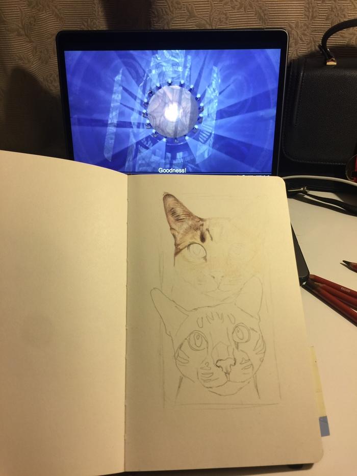 Котики и собакены. Цветные карандаши. Кот, Собака, Портреты животных, Арт, Длиннопост, Рисунок, Цветные карандаши, Анималистика, Животные