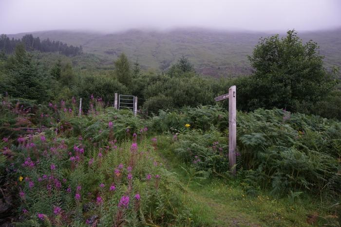 По Шотландии на автомобиле, день 4-5 Путешествие в Европу, Фотография, Природа, Красота, Пейзаж, Длиннопост