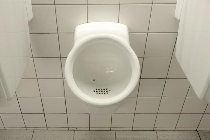 Чтобы сократить затраты на уборку туалетов в аэропорту Амстердама, на писсуары наклеили изображения мух Муха, Писсуар, Амстердам, Обман зрения, Хитрость