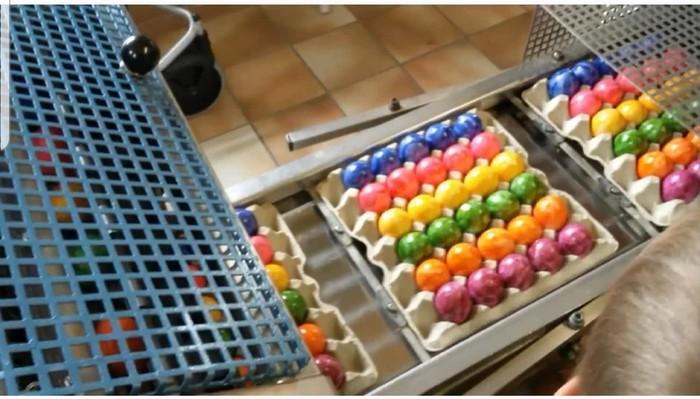 Германия готовится к ПасÑе. Германия, ПасÑа, ПасÑальные яйца, Видео, Длиннопост
