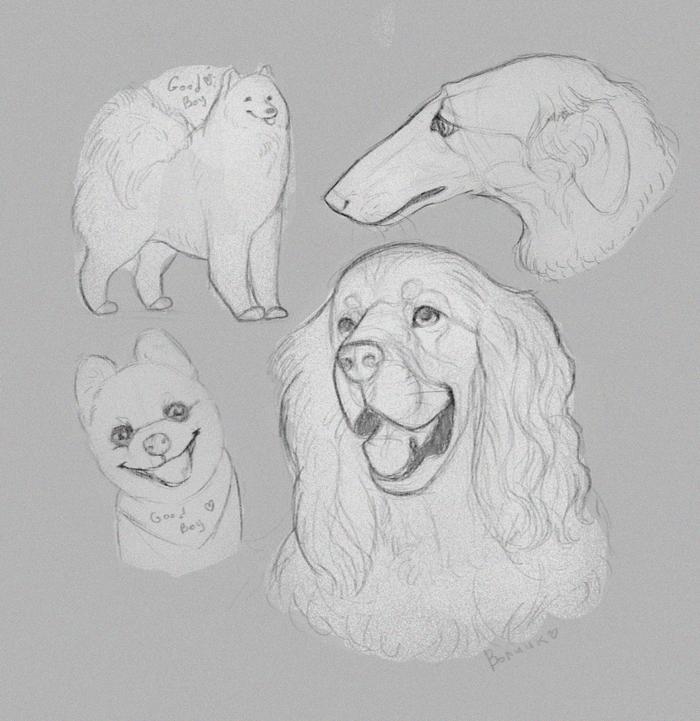Собаки - это последние Ангелы Скетч, Собака, Арт, Digital, Животные, Анималистика, Цифровой рисунок, Рисунок