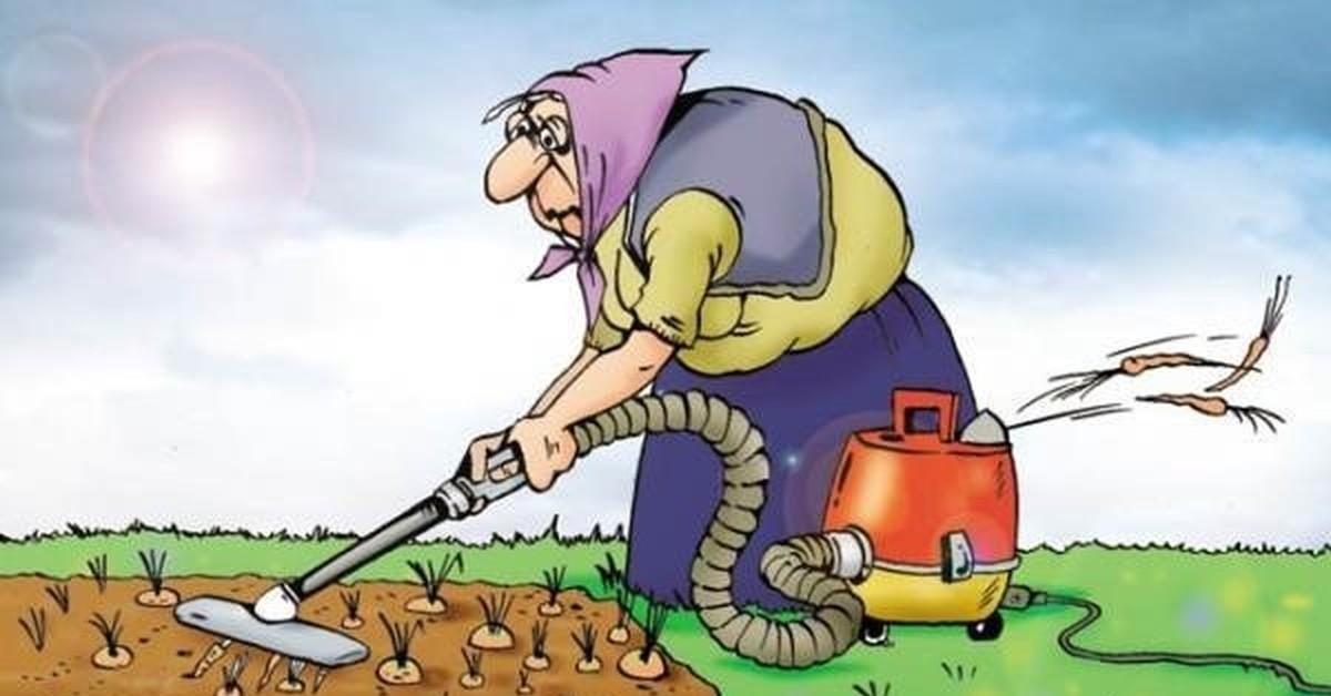 Открытка работа на огороде, открытка