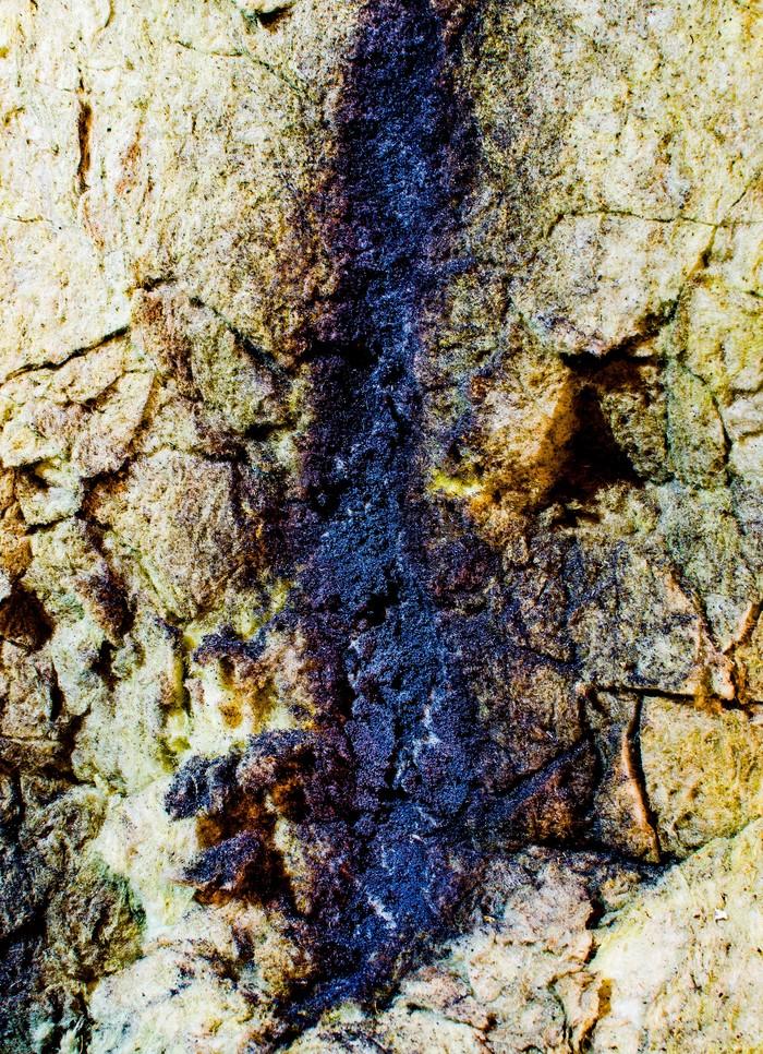 Окалина Фотография, Начинающий фотограф, Минеральная вата, Nikon d5100
