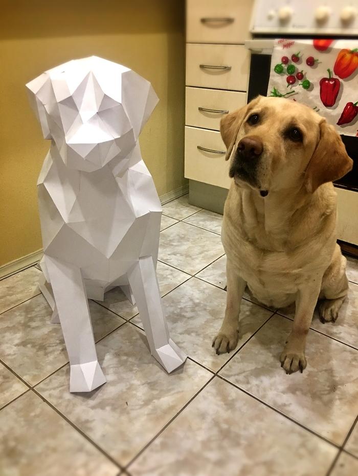 Заказчик в замешательстве Papercraft, Рукоделие без процесса, Лабрадор, Собака, Первый пост