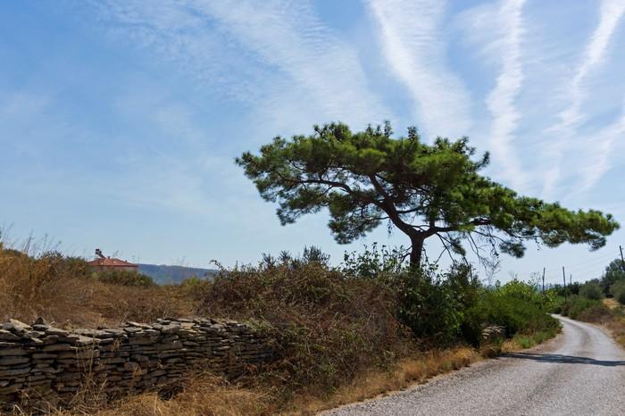 Горы, солнце, дорога... Фотография, Длиннопост, Турция, Горы, Туризм, Природа