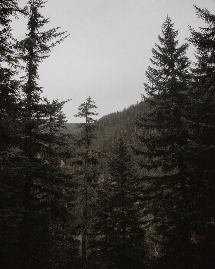 Горное озеро Амут в Хабаровском крае. Путешествие по России, Путешествия, Длиннопост, Фотография, Дикая природа