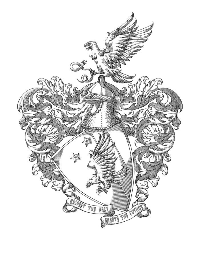 Новый герб! Герб, Геральдика, Арт, Гравюра, Векторная графика, Беркут, Звёзды, Щит, Длиннопост