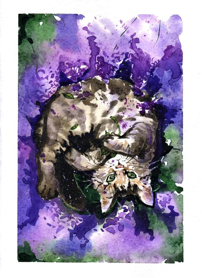 Cиреневый кот Творчество, Арт, Акварель, Кот, Котомафия, Животные, Длиннопост, Анималистика, Рисунок