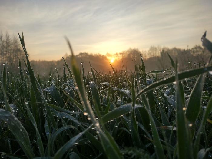 Утро на пути домой Фотография, Рассвет, Красота, Природа