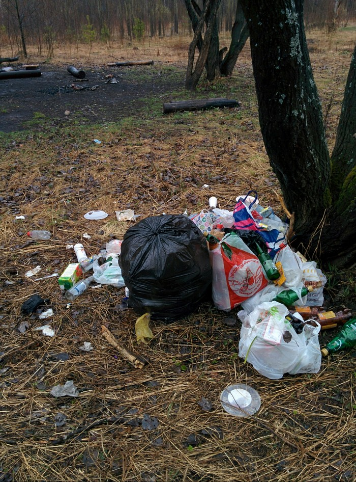 Прибираюсь в Балатовском парке Пермь, Балатовский парк, Мусор, Пластиковые бутылки, Уборка, Длиннопост