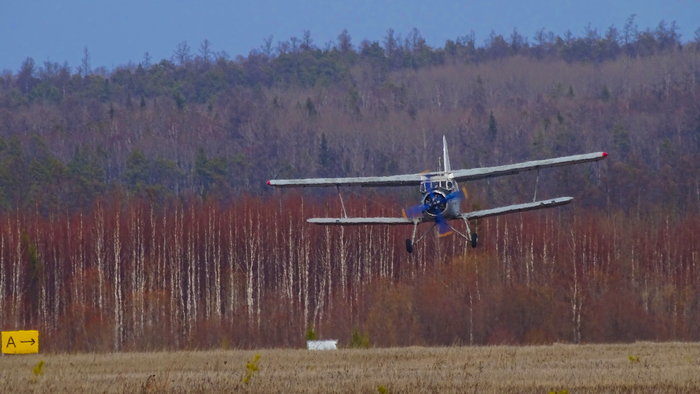 Посадка Ан-2 Ан-2, Самолет, Авиация