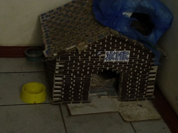Кошкин дом Кот, Добро, Длиннопост