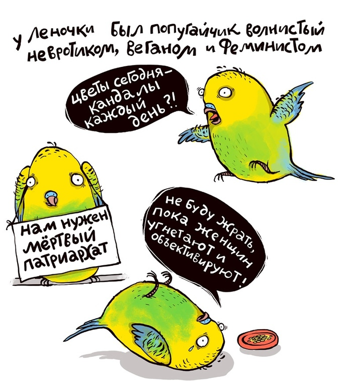 Про попугаев