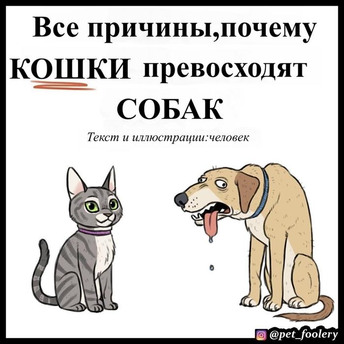 Кошки v/s собак Собака, Кот, Комиксы, Длиннопост, Pet Foolery