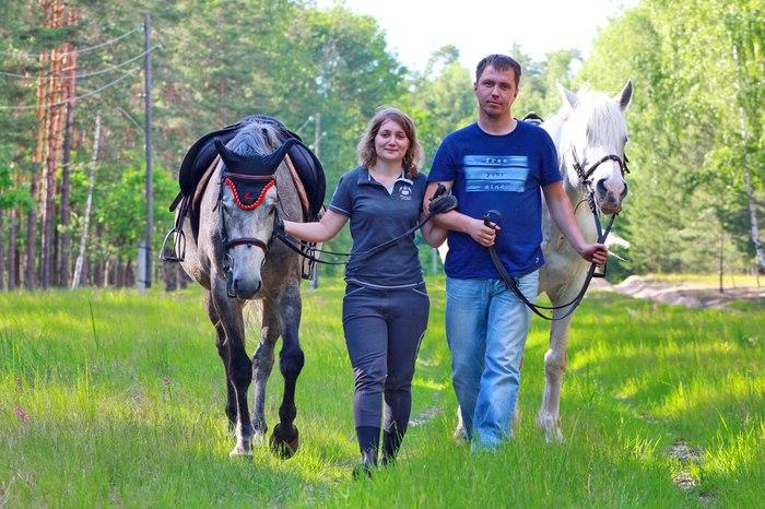 Как мы коня купили Лошадиные истории, Домашний любимец, Спасение, Длиннопост