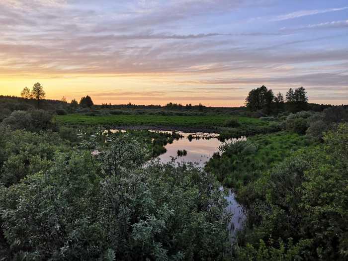 Закат на болотце Закат, Поле, Начинающий фотограф, Природа