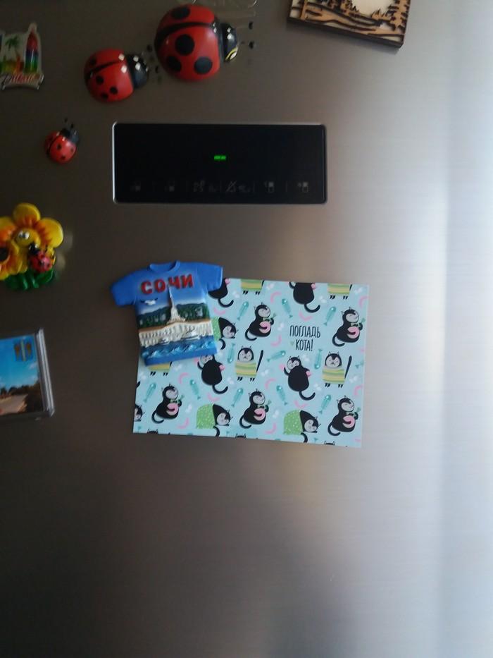 Обмен подарками. Альтруист из Сочи Обмен подарками, t-Shirts crossing, Обмен футболками, Длиннопост, Отчет по обмену подарками