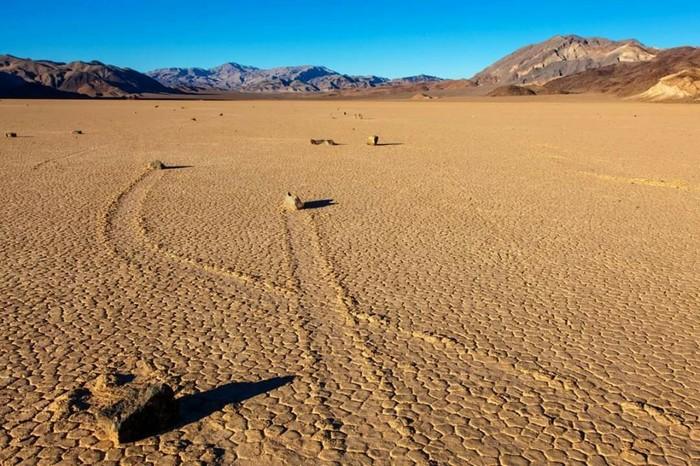 Однажды в пустыне Мохаве Пустыня, Голодание, Эксперимент, Шутка, Юмор, Детектив, Прикол, Наука