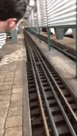 Ваш поезд прибыл, сэр