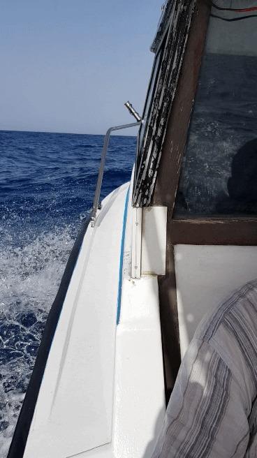 Открыли сезон ловли голубого тунца! Рыбалка, Тунец, Средиземноморье, Морская болезнь, Гифка, Длиннопост