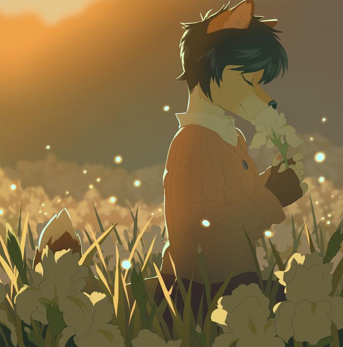 Flower Field Фурри, Furry Art, Furry Canine, Furry Dog, Цветочная поляна, Цветы