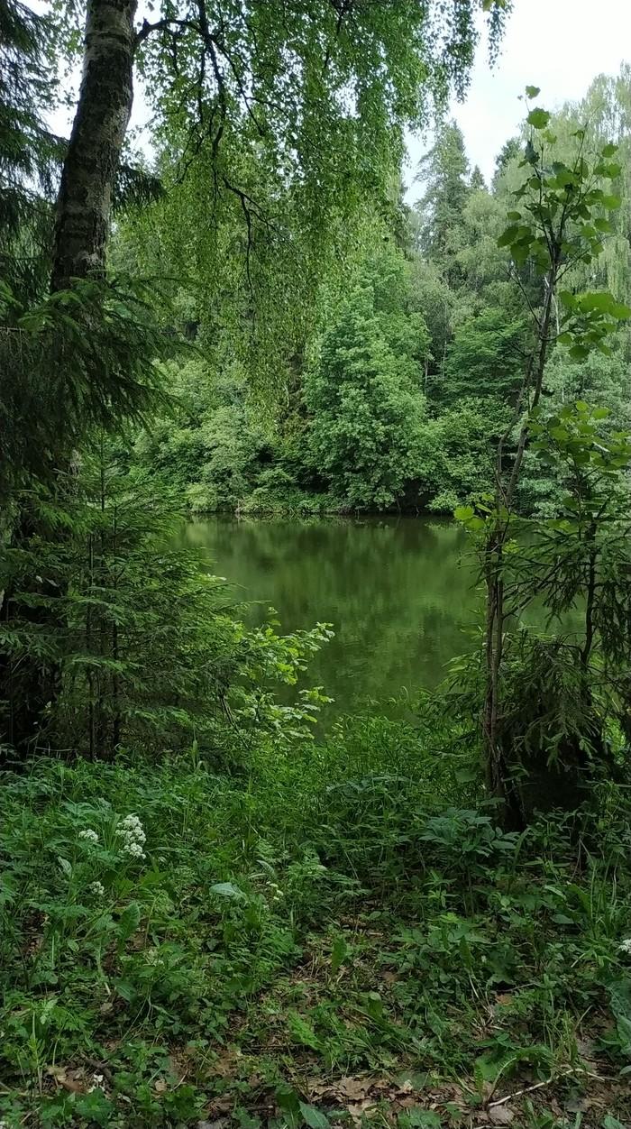 Отрадное, ближайшее Подмосковье. Река Синичка.