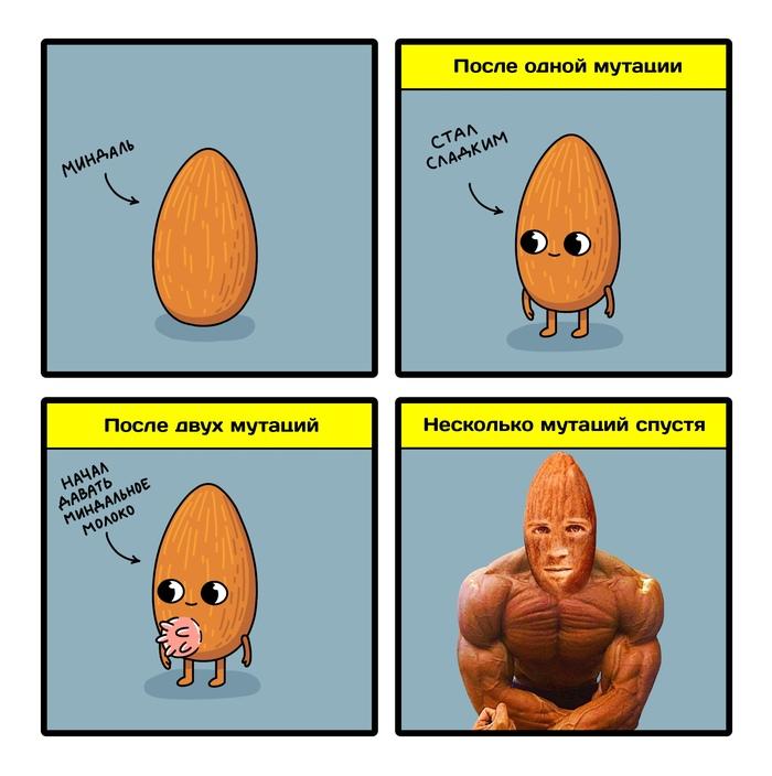 Новость №856: Единственная мутация превратила горький миндаль в сладкий Образовач, Наука, Комиксы, Миндаль, Генетика, Юмор