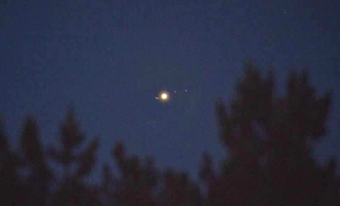 Когда надоело фотать Луну Фотография, Ночь, Юпитер, Астрофото, Лес