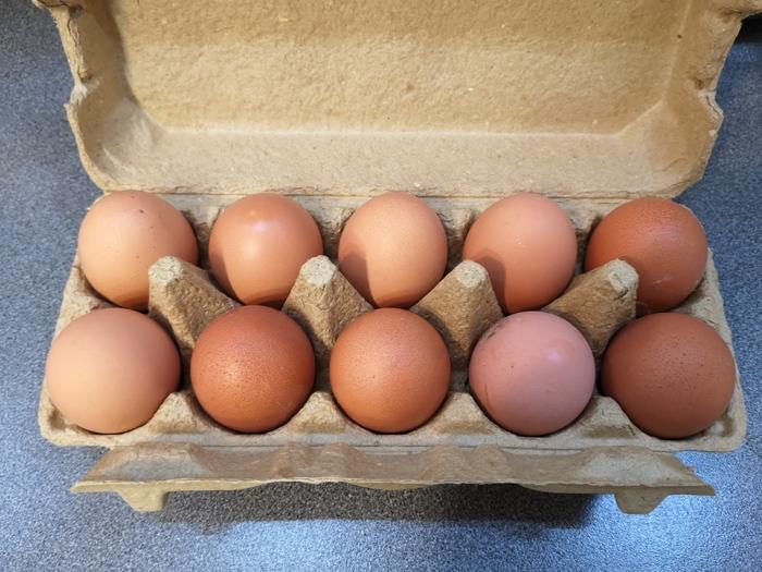 огромные яйца лесбиянки первого раза нельзя