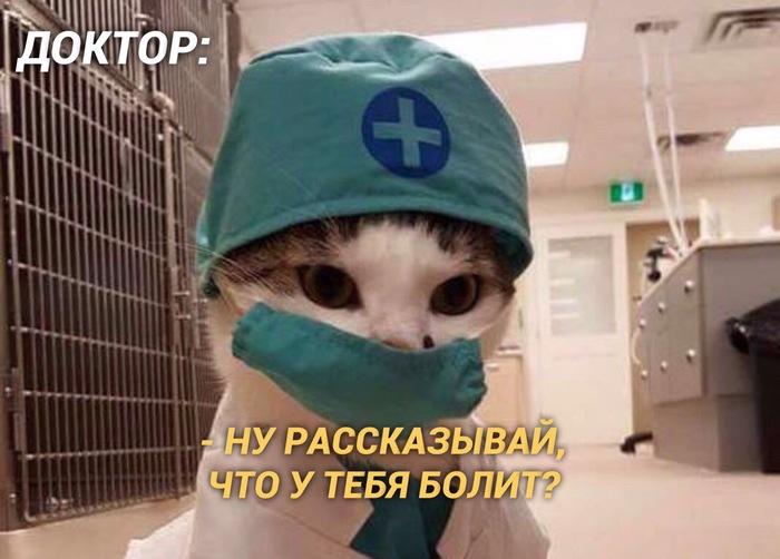Когда ходишь на приём к врачу вместе с мамой:) Медицина, Юмор, Мама, Длиннопост, Кот