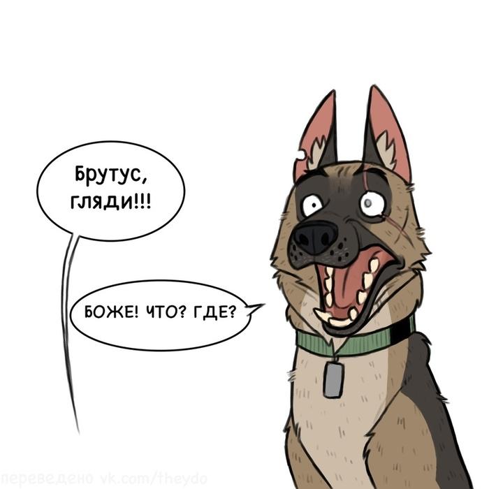 Я сама Pet Foolery, Брут и Пикси, Комиксы, Длиннопост