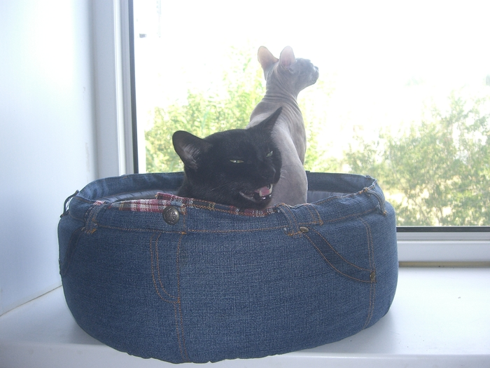 Лежанка для кошки. Из джинсов Лежанка, Кот, Питомец, Кошкин дом, Длиннопост