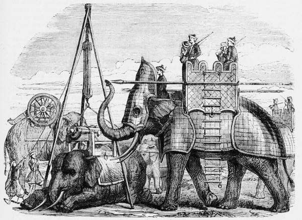 Слоны в бою и не только