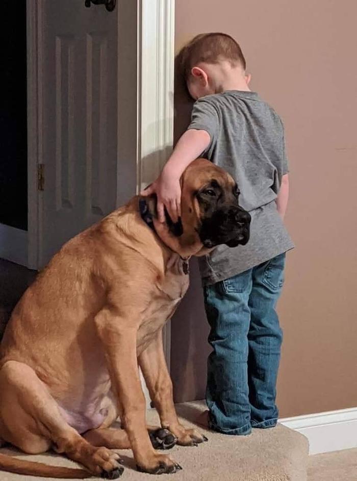 """""""Когда родители наказали, но ваш лучший друг не позволит вам провести время в одиночестве"""""""