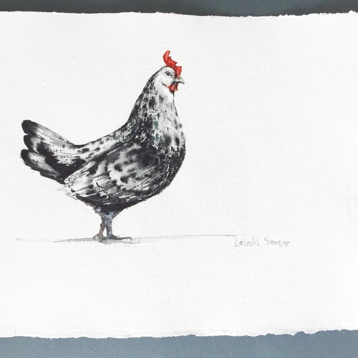 Ну и какой петух без курицы, серия птиц, акварель