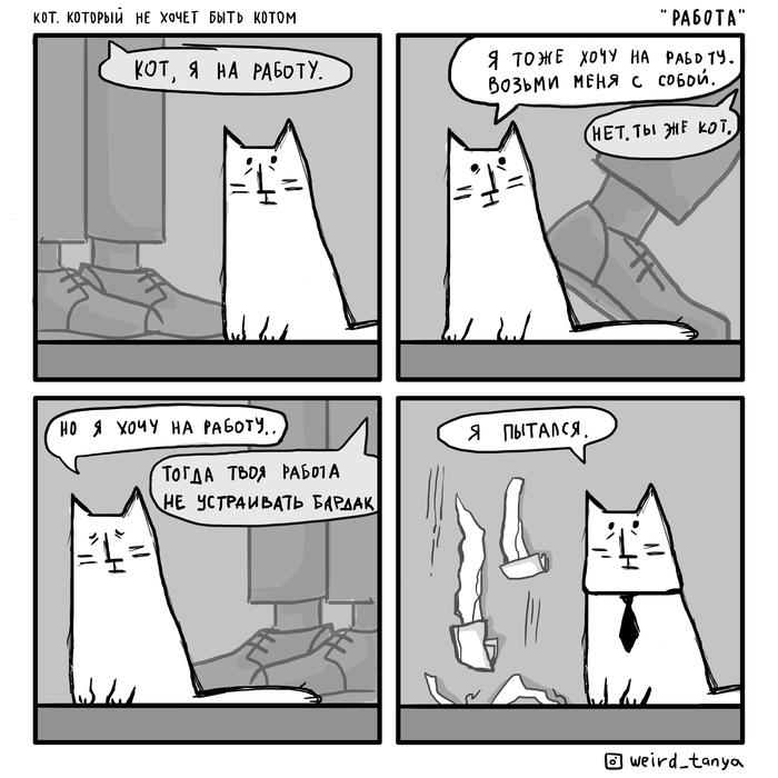 Кот, который не хочет быть котом 2