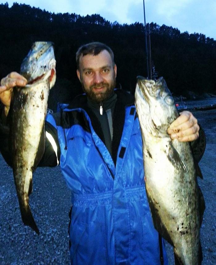 Рыбалка в Норвегии. С берега во фьорде были пойманы две рыбки