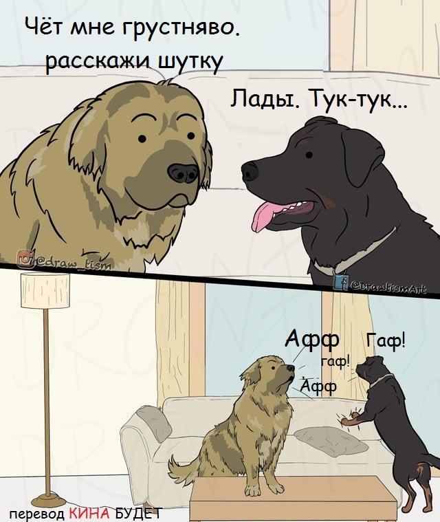 Отличная шутка... Для собак