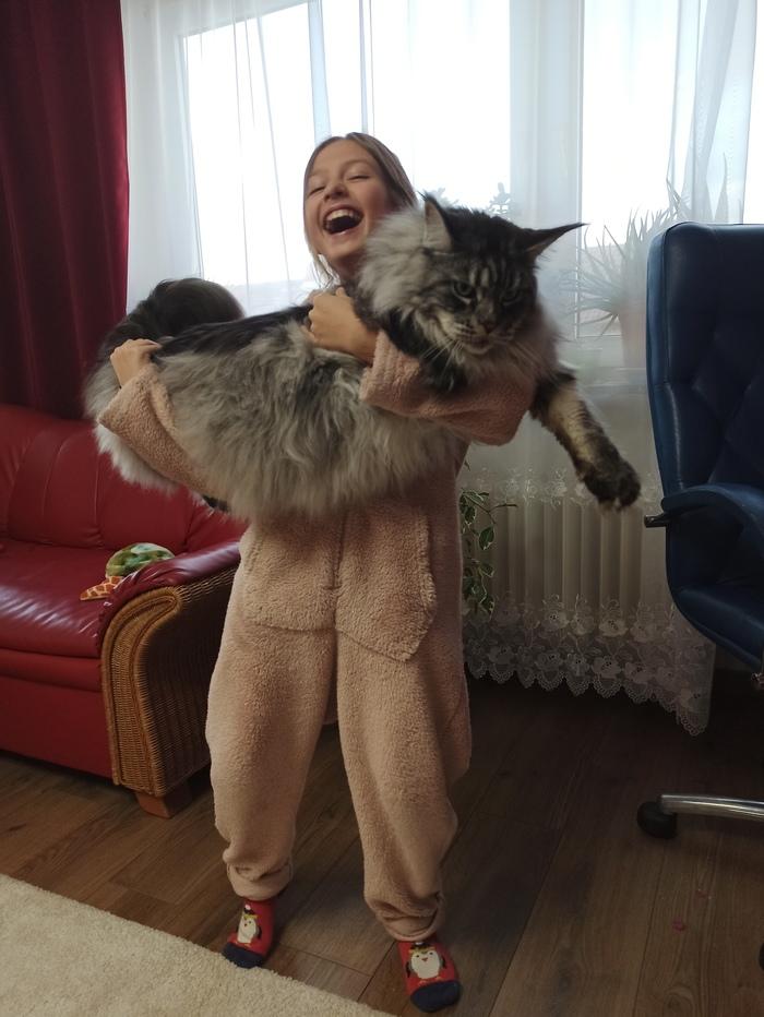 Настроения и котиков в ленту