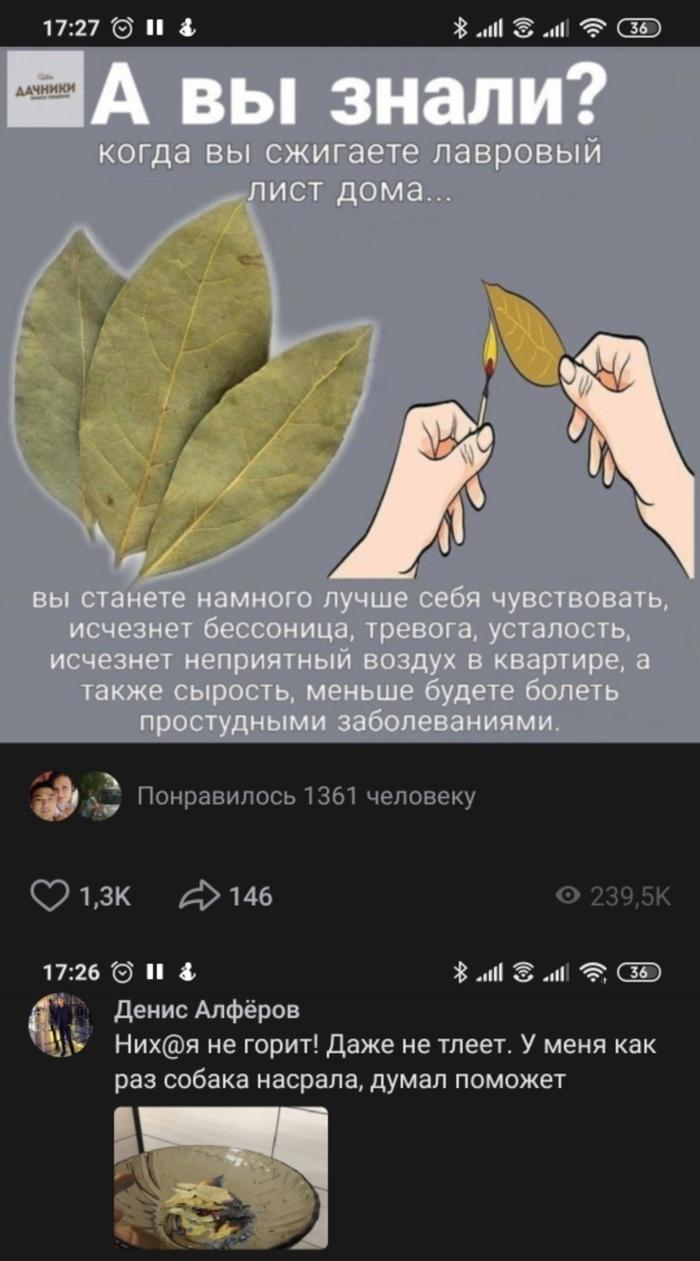 Улыбнуло )))