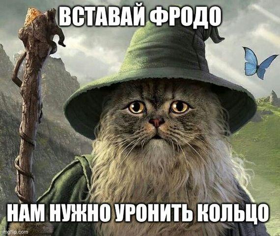 Вставай Фродо